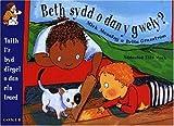 Beth sydd o dan y Gwely? (Llyfr Mawr)