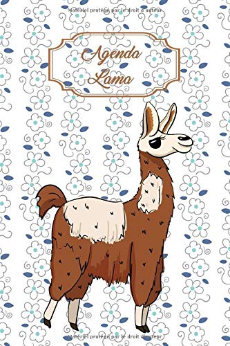 Agenda Lama: Agenda perpétuel avec couverture et intérieur Lama - 56 semaines avec des pages supplémentaires à découvrir (15 x 23 cm) par Virginie Cartonnet