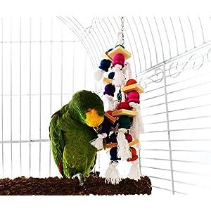 LESYPET Natürliches Vogel Spielzeug, Bunte Papageienspielzeug Vögel Kauen Spielzeug Sexspielzeug