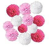 Wartoon Seidenpapier Pompons Blumen Ball Dekorpapier Kit für Geburtstag, Hochzeit, Baby Dusche, Parteien, Hauptdekorationen, Partei Dekoration - 12 Stück ( Rosa, Pink und Weiß )
