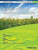 Mechanisms of Landscape Rehabilitation and Sustainability