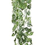 Ghirlanda di POTHOS Scindapsus artificiale per matrimonio decorazione ornamento