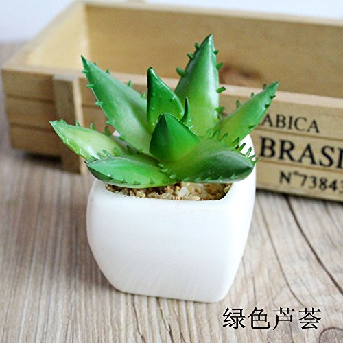 WANG-shunlida Unechte Blumen Topfpflanze Simulation Sukkulenten Bonsai Mini Mode Schmuck sukkulenten Topfpflanzen Blume Simulation, Grün Aloe Vera (Mini-sträuße)