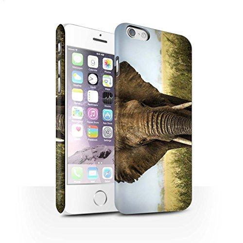 Clipser Matte Coque de Stuff4 / Coque pour Apple iPhone 7 Plus / Girafe Design / Animaux sauvages Collection Éléphant