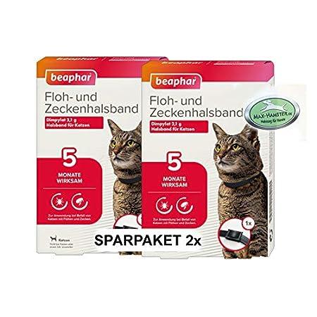 MAX HAMSTER SPARPACK: 2 x Beaphar Ungezieferhalsband/Flohband für Katzen Flöhe + Zecken Weg – Ungezieferband von Beaphar…