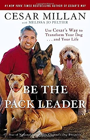 Be the Pack Leader: Use Cesar's Way to Transform Your