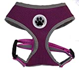 Best Four Paws Dog Harness For Cars - Purple Reflective Mesh Soft Dog Harness Safe Harness Review