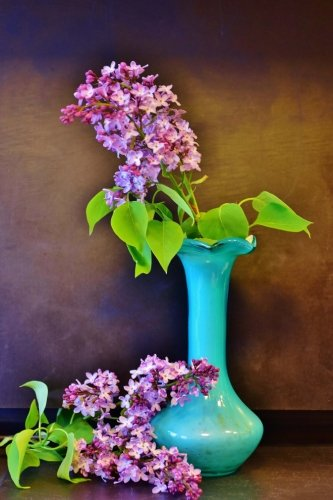 Pretty Lilac Flowers in a Vase Journal: Take Notes, Write Down Memories in this 150 Page Lined Journal