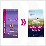 Eukanuba Puppy Small Breed Trockenfutter (für Welpen kleiner Hunderassen, Premiumnahrung mit Huhn), 3 kg Beutel - 8