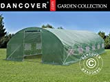 Dancover Foliengewächshaus 4x8x2m, 32m², Grün