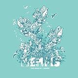 Songtexte von Memfis - The Wind-Up