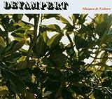 Songtexte von Deyampert - Shapes & Colors