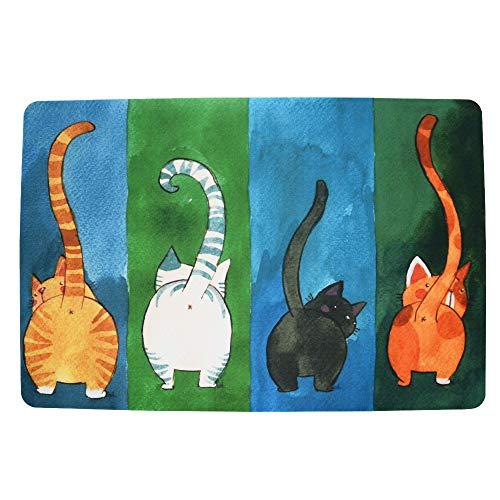 Fußmatte Katze Fussmatten Rutschfest und Waschbar Türmatten für Innen und Aussen(40 x 60 cm Vielfarbig )