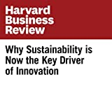 Why Sustainability is Now the Key Driver of Innovation (Harvard Business Review)