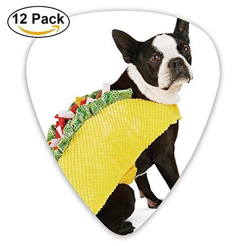 Halloween Bootique Taco Dog Classic Plektren (12er Pack) Geschenke für Männer Frauen Teens Kinder Für E-Gitarre, Akustikgitarre, Mandoline und Bass