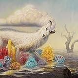 Hollow Bones (Signed LP) [VINYL]