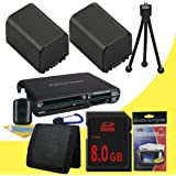 TWO NP-FV100 Lithium Ion Replacement Batteries + 8GB SDHC Memory Card + Memory Card Reader/Wallet + Deluxe Starter Kit For Sony NEXVG10 NEXVG20 Interchangeable Lens HD Handycam Camcorder DavisMAX Accessory Bundle