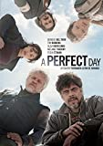 A Perfect Day [USA] [DVD]