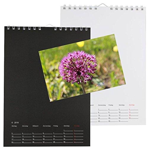 Foto Bastelkalender 2019 Kreativkalender A4 Kalender zum selber gestalten NEU