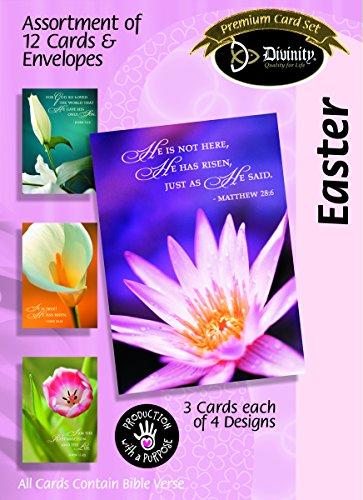 Divinity Boutique Grußkarte Sortiment: Ostern, Spring Flowers (22239N)