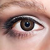 KwikSibs farbige Kontaktlinsen, dunkelbraun, große Augen / big Eyes, weich, inklusive Behälter, BC 8.6 mm / DIA 15.0 / -0,75 Dioptrien, 1er Pack (1 x 2 Stück)