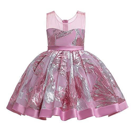 Ucoolcc Mädchen Kinder Ärmellos Stickerei Prinzessin Kleider Ballettkleid Kinder Ballett Trikot Ballettanzug mit Tütü Röckchen