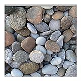 Kieskönig Flusskiesel Zierkies River Pebbles Gartenkies Ziersteine Gartenteich bunt 30-90 mm 5 kg