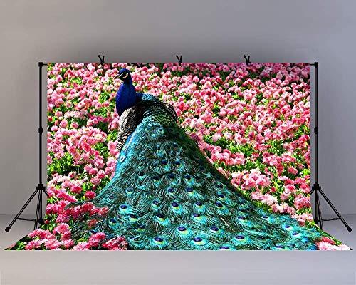 EdCott 10x8ft Hochzeitsfeier Thema Pfau Hintergrund Frühling Hintergrund Garten Pfau Blume Bogen Fotografie Hintergrund Foto schießen Requisiten YouTube Hintergrund Studio Requisiten