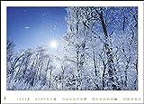 Die Pracht des Waldes: Deutschlands sch?nste W?lder. Wandkalender 2020. Monatskalendarium. Spiralbindung. Format 68 x 49 cm