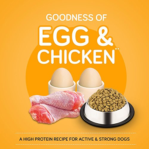 Pedigree Adult Dry Dog Food (High Protein Variant), Chicken, Egg and Rice, 3 Kg