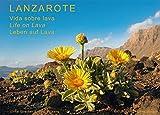 Lanzarote - Leben auf Lava: Vida sobre lava - Life on Lava