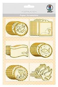 Ursus-Diseño de cartón Charity