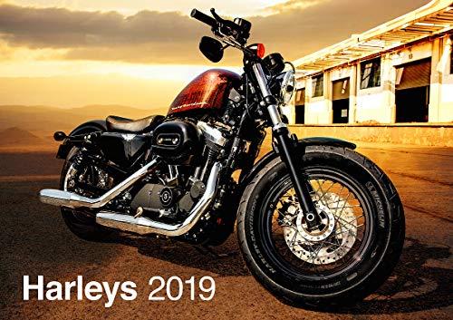Harley Davidson 2019 Calendrier [moto]