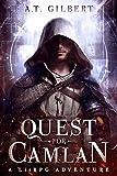 Quest for Camlan: A LitRPG Adventure (Camlan Realm Book 1)