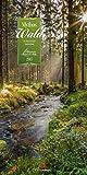 Mythos Wald - Kalender 2017 - Ackermann-Verlag - Vertikal - Wandkalender 33 cm x 66 cm