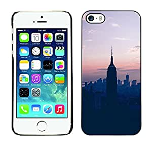 Omega Snap on Hard Back Case Cover Shell FOR Apple iPhone 5 / 5S - State Sunset Blue Nyc New York