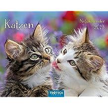 Notizkalender Katzen 2019 Wandkalender Postkartenformat