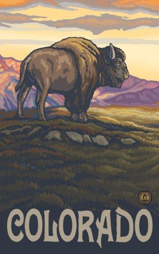 Northwest Art Mall Colorado Buffalo LBS Wandbild von Paul A. Lanquist, 28 x 43 cm