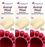 Carnation Animal Wool 25g x 6 Packs