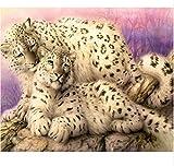 WACYDSD Puzzle 1000 Pezzi Bambini Leopardi Ghepardi Casa Decorazione Camera Puzzle Classico 3D Puzzle Fai da Te Kit Giocattolo di Legno Home Decor