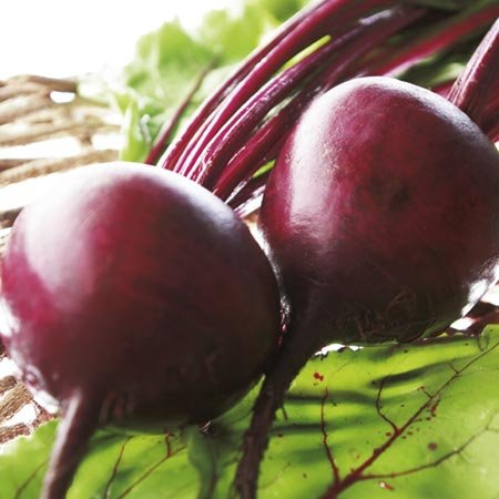 seekay-beetroot-boltardy-appx-100-seeds-vegetable