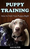 Puppy Training: How to Train Your Puppy Right!