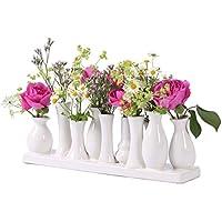 Suchergebnis Auf Amazonde Für Blumen Vasen Wohnaccessoires