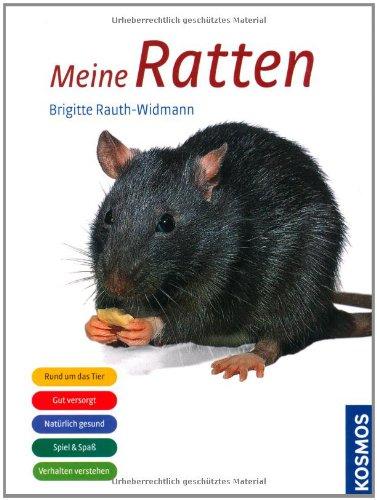 Meine Ratten (Ratte Haustier Versorgt)