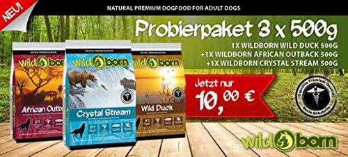 Preisvergleich Produktbild WILDBORN getreidefreies Hundefutter Probierpaket TASTE - 3 x 500g für erwachsene Hunde zum Testpreis inkl. Überraschungsgeschenk