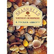 Seashells of the Northern Hemisphere