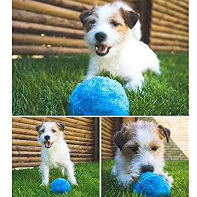 Zooarts Funny Pet Electric Toy Ball - Keep Your Dog Active and Healthy