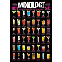 "Pyramid International "" Mixology Maxi Poster, Multi-Colour, 61 x 91.5 x 1.3 cm preiswert"