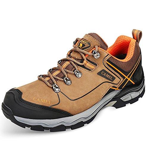 buy online b53c4 9b06c Camel Chaussures de randonnée pour Hommes en Plein air Trekking Low-Top  Professionnel antidérapant Sneaker