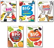 Pack of 5 Big Picture Books